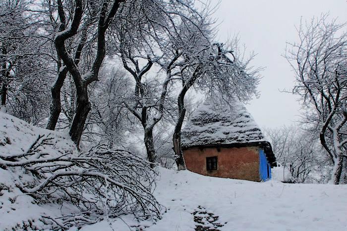 Maine: Vremea se va mentine apropiata de normalul termic al perioadei