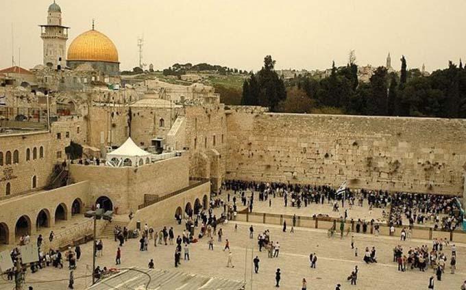 large_zidul-plangerii-israel
