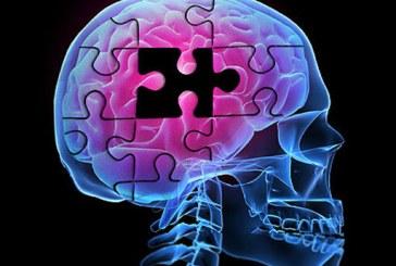 Alzheimer: un nou tratament potential studiat pe animale
