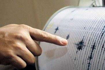Cutremur de 3,9 grade pe scara Richter in Vrancea, la ora 12,08