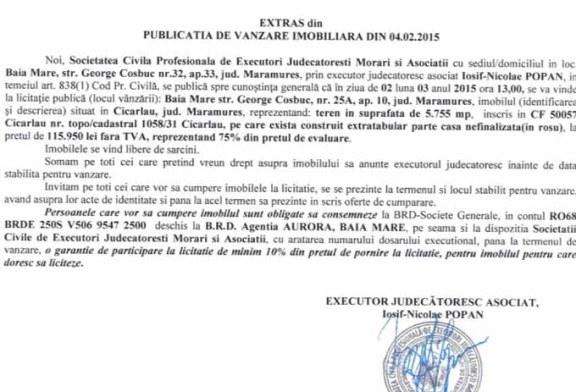 Vanzare teren in Cicarlau – Extras publicatie vanzare imobiliara, din data de 17. 02. 2015