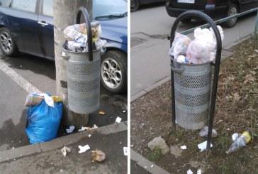 BAIA MARE – Primele amenzi pentru că și-au lăsat gunoiul din casă în coșul stradal