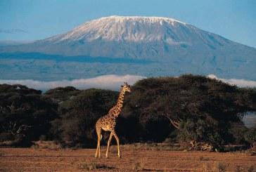 Tanzania, in faza finala a infiintarii unui centru de date pentru a afla de ce se topeste zapada de pe Kilimanjaro