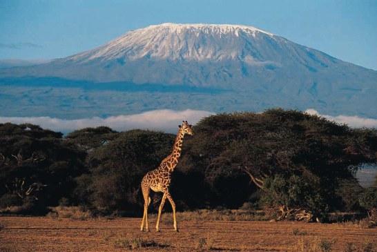 10 maramureseni vor sa escaladeze cel mai inalt varf din Africa