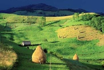 Satul romanesc in care masinile ar putea fi interzise
