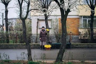 Cadrul zilei: Hajdu Tamas