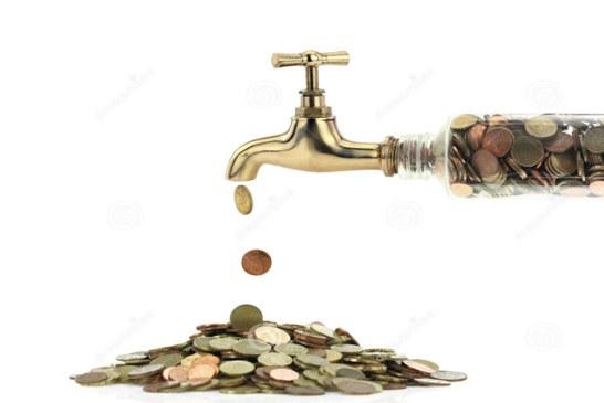VITAL, cifre soc! 1 milion euro, profit in 2014. Salarii totale de 5 milioane euro anual