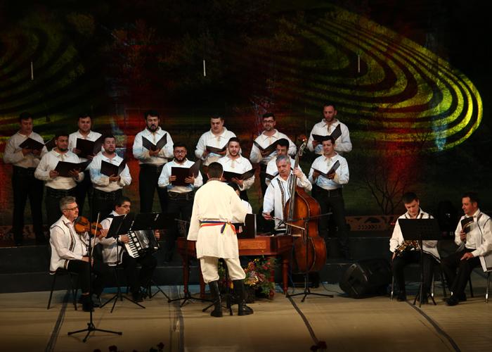 concert ansamblu (2)