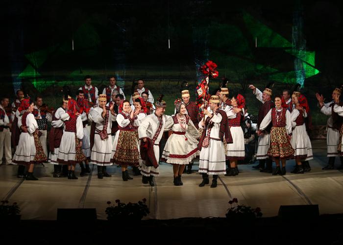 concert ansamblu (4)