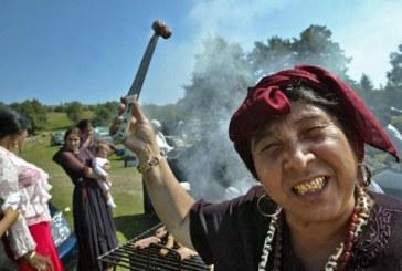 Proiect de lege: Romii ar putea fi numiti din nou tigani