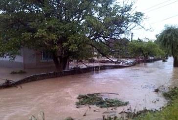 Ploi torentiale: Inundatii in mai multe localitati din Maramures