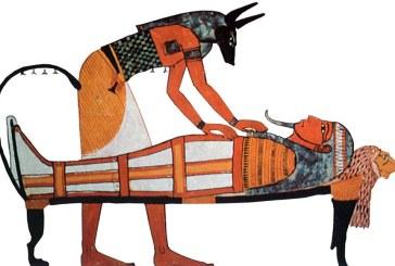 O treime dintre mumiile de animale din Egiptul Antic sunt falsuri