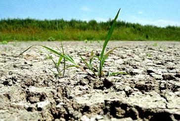 Agrometeo: Seceta pedologica va persista in majoritatea zonelor agricole pana pe 9 septembrie