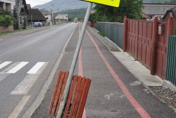 Teribilism: Mai multe indicatoare rutiere, puse la pamant in Borsa