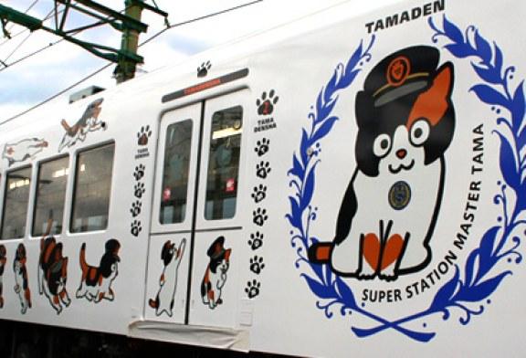 "Pisica ""Nitama"" – noua sefa de gara a unei localitati din Japonia"
