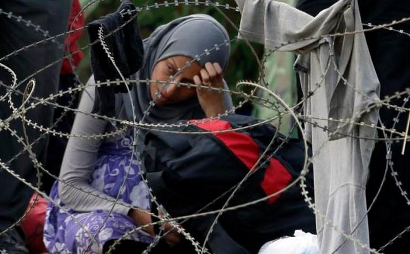 imigranti-musulmani