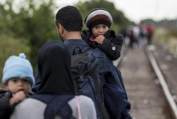 Centrul Regional pentru Solicitantii de Azil Somcuta Mare: Aproape 1.300 de cereri pentru azil, la sfarsitul primului trimestru