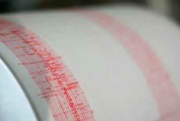INFP: Cutremur de 3,6 pe scara Richter in judetul Buzau, vineri dimineata
