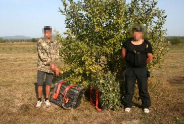 Doi ucrainieni prinsi cu tigari de contrabanda in Maramures