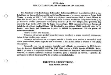 Vanzare teren in Targu Lapus – Extras publicatie imobiliara, din data de 28. 10. 2015