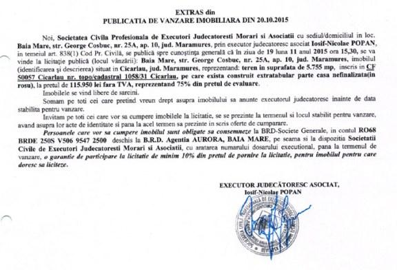 Vanzare teren in Cicarlau – Extras publicatie imobiliara, din data de 22. 10. 2015