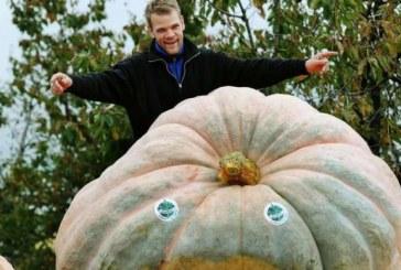 Un elvetian a recoltat un dovleac de 750 de kilograme