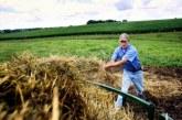 Oros: Invatamantul dual profesional ar putea rezolva problema fortei de munca calificate in agricultura; ideea relansarii liceelor Agricole, nerealista