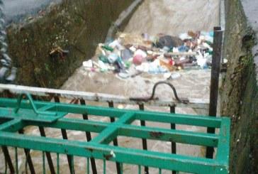 Baia Mare: Gunoaiele aduc apele pe strazi si in case de Ziua Nationala a Romaniei