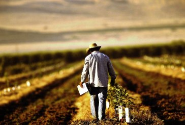 Formare profesionala: Cursuri gratuite pentru agricultorii din Basesti (VIDEO)