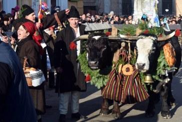 Sighetu Marmatiei: Mii de spectatori la Festivalul Marmatia 2015 (FOTO)