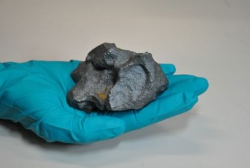 Meteoriti vanduti la licitatie la Paris cu pana la 130.00 de euro bucata