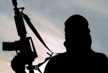 Terorism: Autoritatile germane si austriece, in stare de alerta ridicata