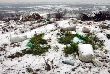 Discutii la Prefectura despre depozitarea ilegala a unor deseuri pe Dealul Dura