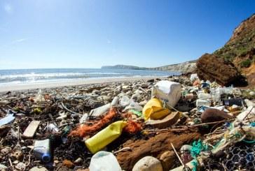 Alarmant! Mai multe gunoaie decat pesti in oceanele si marile planetei