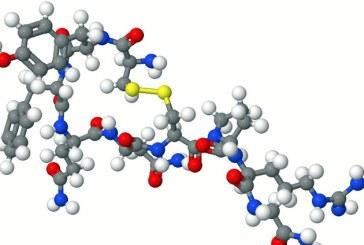Un hormon poate sustine functia imunitara a organismului prelungind durata de viata