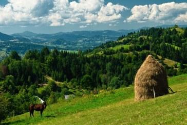 Romania se prezinta la Moscova ca destinatie turistica si mizeaza pe Maramures si Bucovina