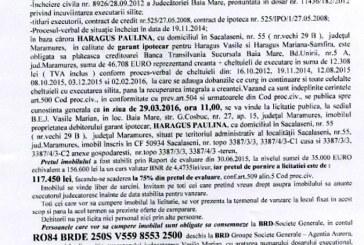 Vanzare casa si teren in Sacalaseni – Extras publicatie vanzare imobiliara, din data de 19. 02. 2016