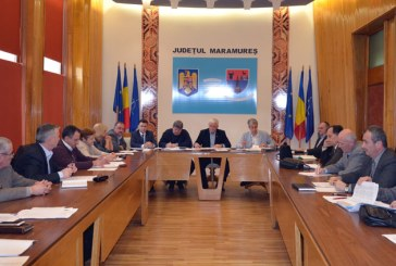 Prefectul Anton Rohian si mai multi parlamentari au participat la sedinta Comisiei de dialog social