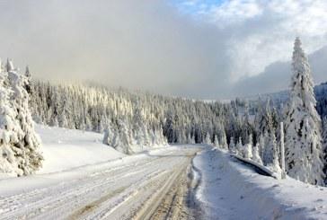 Info trafic: Vizibilitate redusa de ceata in Pasul Prislop