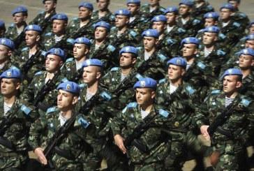 Bulgaria autorizeaza armata sa supravegheze granitele tarii