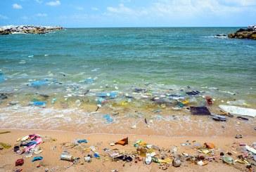 Micile fragmente de material plastic din oceane, amenintare serioasa pentru stridii si alte moluste