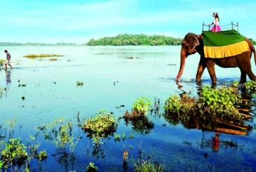 Destinatii de vacanta: Sri Lanka, o tara cu obiective si peisaje spectaculoase
