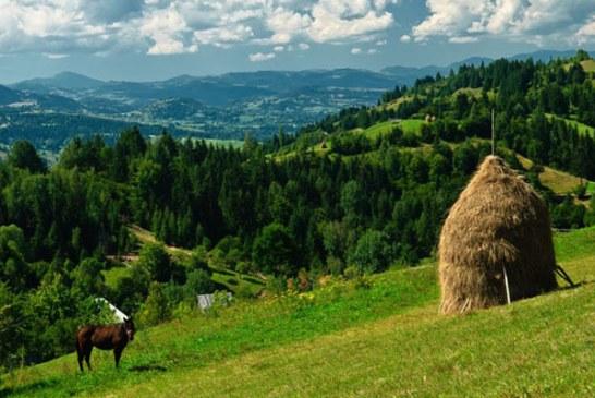Judetul Maramures, printre zonele din tara cu terenuri agricole cu Inalta Valoare Naturala