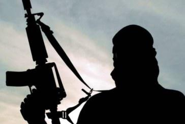 Germania: Parchetul federal a lansat 400 de anchete de terorism in acest an