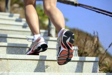 """Urcatul scarilor ajuta la pastrarea """"tineretii"""" cerebrale"""