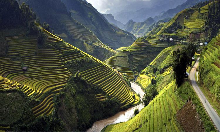 Vietnam-header-1