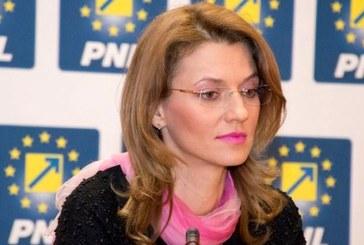 Alina Gorghiu anunta ca programul de guvernare al PNL prevede TVA de 16% din 2019