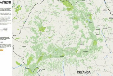 Harta online: Afla de unde vine numele tau de familie