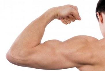 Exersarea musculaturii prelungeste durata de viata