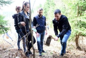 """Gabriel Zetea: """"La Cavnic – o actiune civica de recuperare a zonelor verzi, pierdute in ultimele doua decenii"""" (FOTO)"""